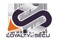 Loyalty-secu PTZ Camera manufacturer in China